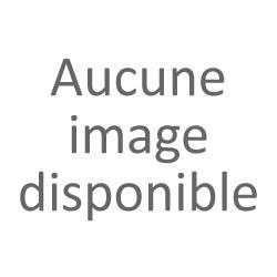 Gaultier Buey Fleuriste